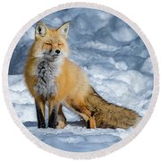 Fox On A Winter Afternoon Round Beach Towel