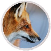 Fox Profile Round Beach Towel by Mircea Costina Photography