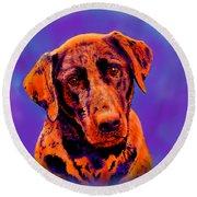 Fox Red Labrador Painting IIi Round Beach Towel