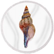 Fox Shell Round Beach Towel