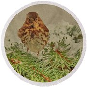 Fox Sparrow In Winter Round Beach Towel by Janette Boyd