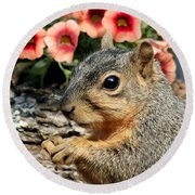 Fox Squirrel Portrait Round Beach Towel