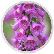 Round Beach Towel featuring the photograph Foxglove Flowers by Edward Fielding