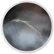 Round Beach Towel featuring the photograph Foxtail - Abstract Art by Kerri Farley