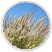 Foxtails On A Hill Round Beach Towel