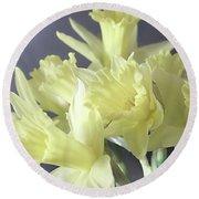 Fragile Daffodils Round Beach Towel by Jacqi Elmslie