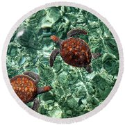 Fragile Underwater World. Sea Turtles In A Crystal Water. Maldives Round Beach Towel