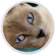 Frankie Blue Eyes Round Beach Towel