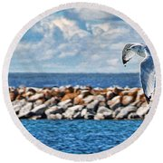 Free Flight Round Beach Towel