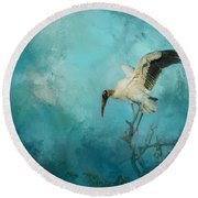 Round Beach Towel featuring the photograph Free Will by Marvin Spates