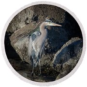 Round Beach Towel featuring the photograph French Creek Heron by Randy Hall