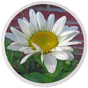 Fresh As A Daisy Round Beach Towel
