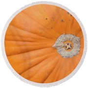 Fresh Organic Orange Giant Pumking Harvesting From Farm At Farme Round Beach Towel