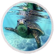 friendly Hawaiian sea turtle  Round Beach Towel