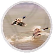 Friends In Flight Round Beach Towel