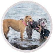 Friends Round Beach Towel
