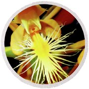Fringed Yellow Orchid Round Beach Towel