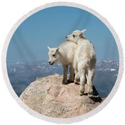 Frisky Mountain Goat Babies Round Beach Towel
