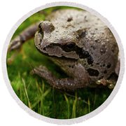 Frog On The Grass Round Beach Towel by Jean Noren