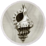 Frog Shell Round Beach Towel
