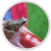 Round Beach Towel featuring the photograph Frog The Prince by Ausra Huntington nee Paulauskaite