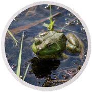 Frog  Round Beach Towel by Trace Kittrell