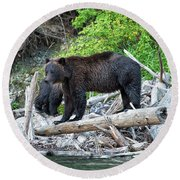 From The Great Bear Rainforest Round Beach Towel by Scott Warner