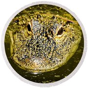 From The Series I Am Gator Number 5 Round Beach Towel