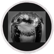 From The Series The Osprey Number Two Round Beach Towel