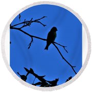 Blue Bird On Blue Round Beach Towel by John Glass