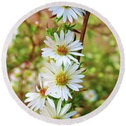 Frost Aster Round Beach Towel by Mary Ellen Frazee