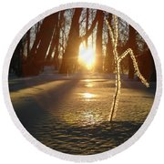 Frost On Sapling At Sunrise Round Beach Towel by Kent Lorentzen