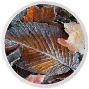 Round Beach Towel featuring the photograph Frosted Painted Leaves by Shari Jardina