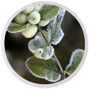 Frosted Snowberries Round Beach Towel