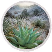 Frosty Agave Round Beach Towel