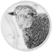 Frozen Dinner Round Beach Towel by Mike  Dawson