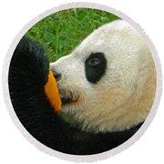 Frozen Treat For Mei Xiang The Giant Panda Round Beach Towel