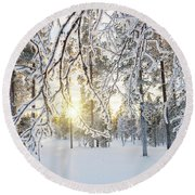 Frozen Trees Round Beach Towel by Delphimages Photo Creations