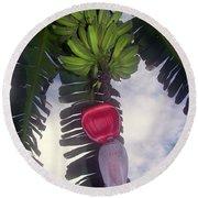 Fruitful Beauty Round Beach Towel by Karen Wiles