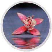 Fuchsia And Reflection Round Beach Towel