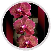 Fuchsia Orchids Oof Round Beach Towel by Phyllis Denton