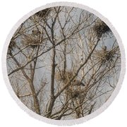 Round Beach Towel featuring the photograph Full House by David Bearden