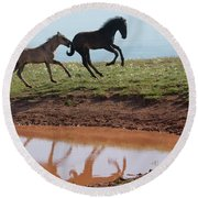 Fun In The Rockies- Wild Horse Foals Round Beach Towel