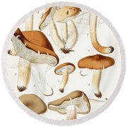 Fungi Round Beach Towel