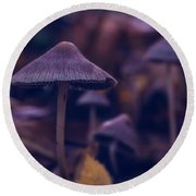 Round Beach Towel featuring the photograph Fungi World by Gene Garnace