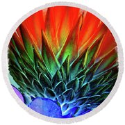 Funky Protea Round Beach Towel