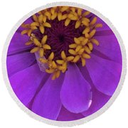 Fuschia Zinnia Round Beach Towel