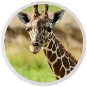 G Is For Giraffe Round Beach Towel by John Haldane