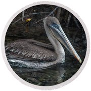 Galapagos Pelican Round Beach Towel