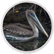 Galapagos Pelican Round Beach Towel